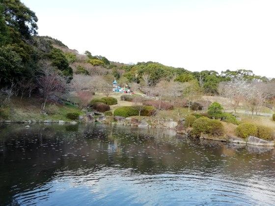 林 公園 森林 広い 遊具 画像 写真 佐賀
