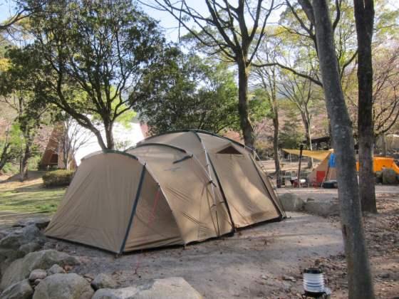 春キャンプ キャンプ コールマンタフスクリーン2ルームテント 写真 画像 アウトドア 昭和の森キャンプ場