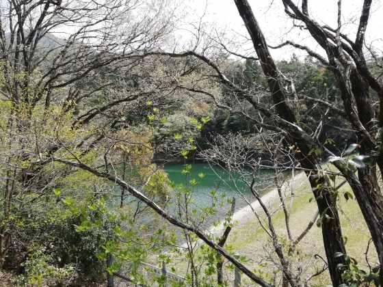 昭和の森キャンプ場 ダム 写真 画像