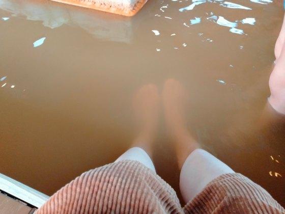 川の駅 船小屋 恋ぼたる 足湯 温泉 ショッピング 写真 画像 にごり湯