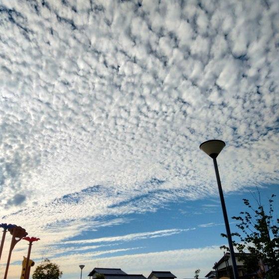 夕空 空 鱗雲 写真 画像