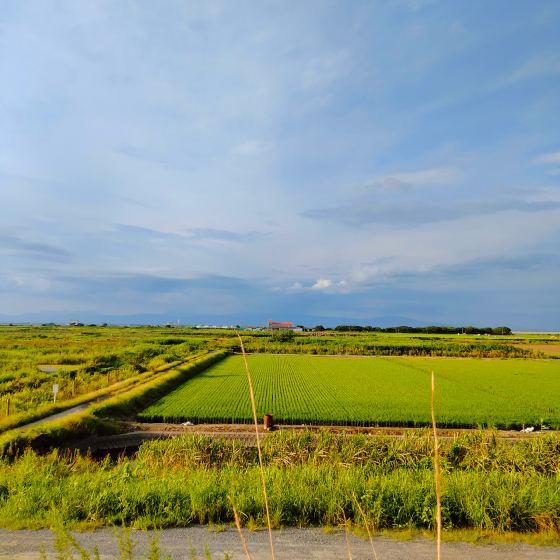 田園風景 写真 画像 田舎 癒やし 緑