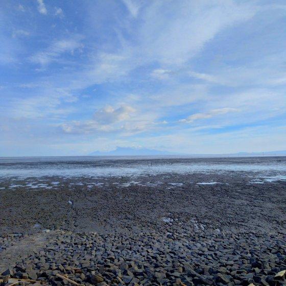 有明海 干潟 写真 画像 海