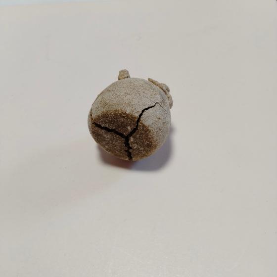 オーブン陶土 失敗 写真 画像 陶土 ハンドメイド ひび割れ 割れる