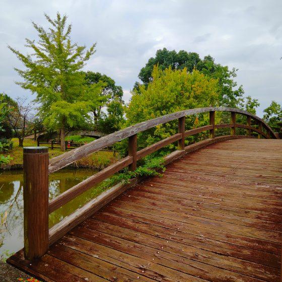 横武クリーク公園 佐賀 橋 写真 画像