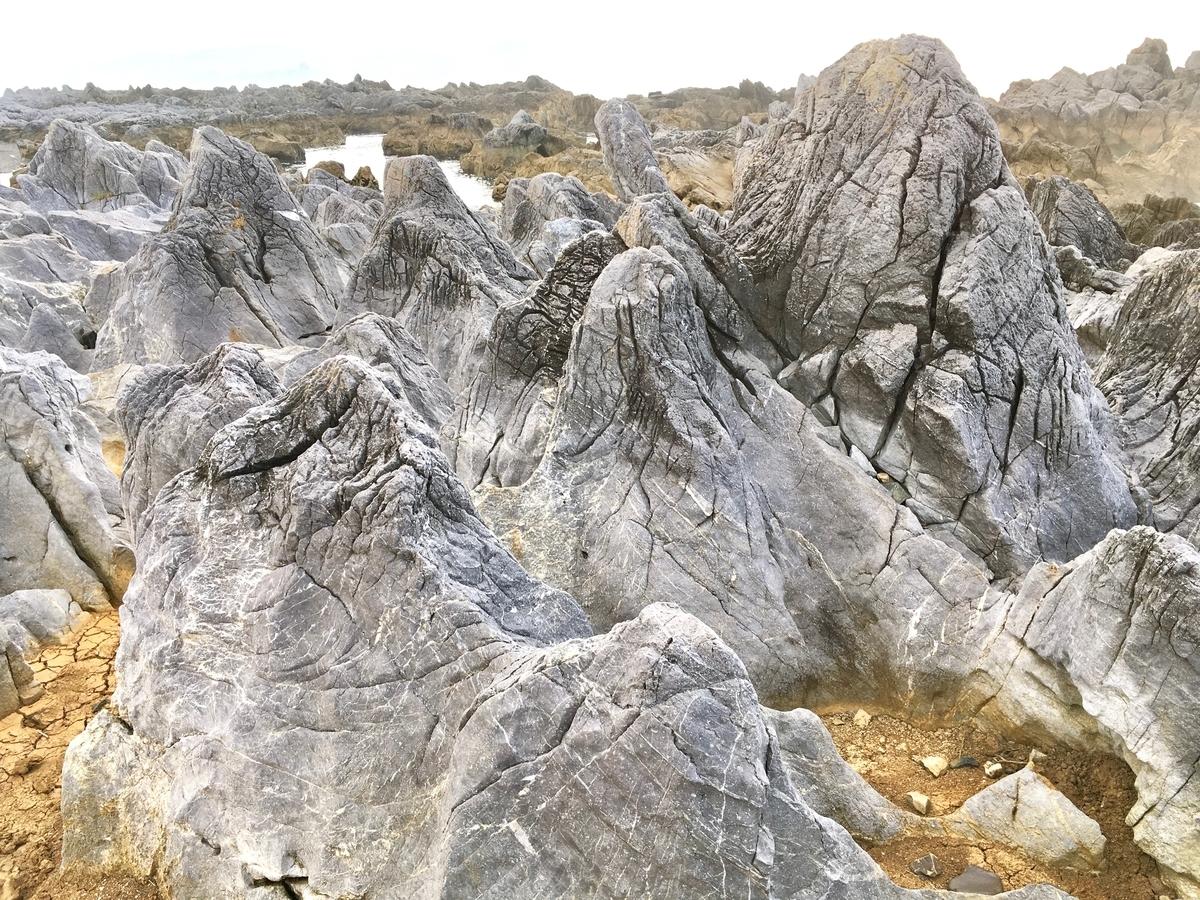 岩井崎の石灰岩地帯