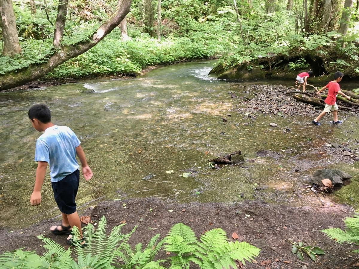 奥入瀬渓流に遊ぶ子供たち