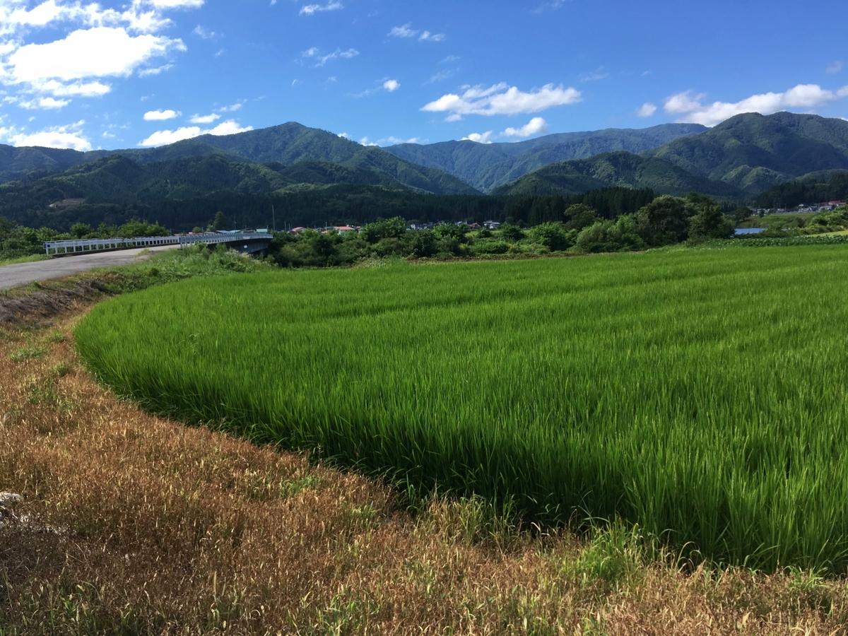 桧木内川ぞい西木町の田園風景