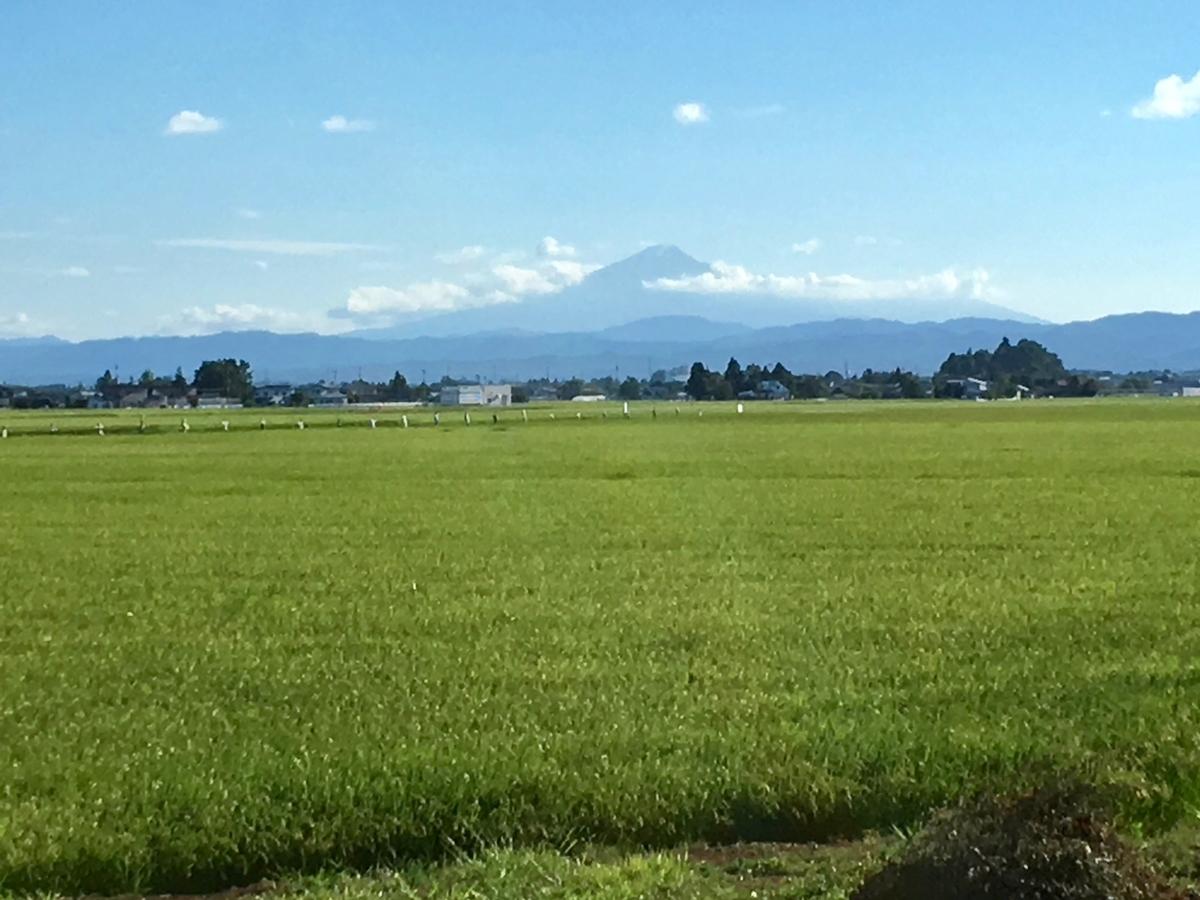 大仙市から望む鳥海山