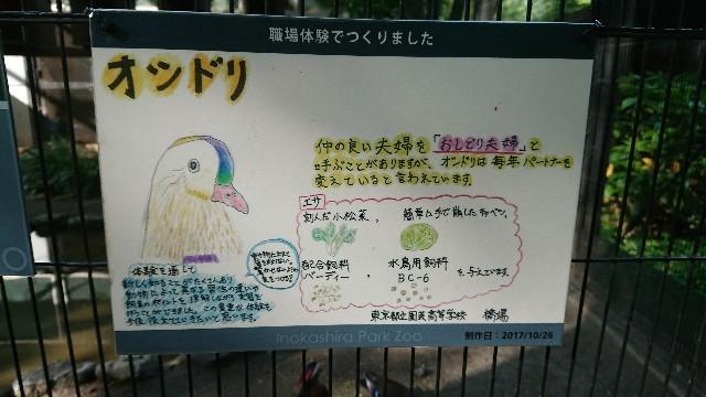 f:id:memorandum-wasureru:20180518150828j:image
