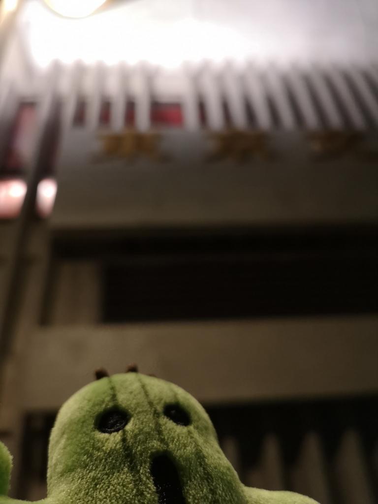 東京文化会館前で撮影(夜)