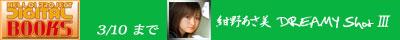 紺野あさ美DS