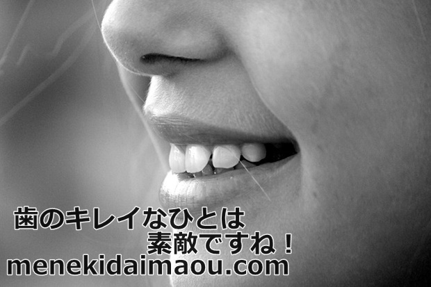 f:id:menekidaimaou:20170304201200j:plain