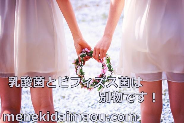 f:id:menekidaimaou:20170311201751j:plain