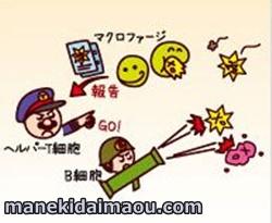 f:id:menekidaimaou:20170312093623j:plain