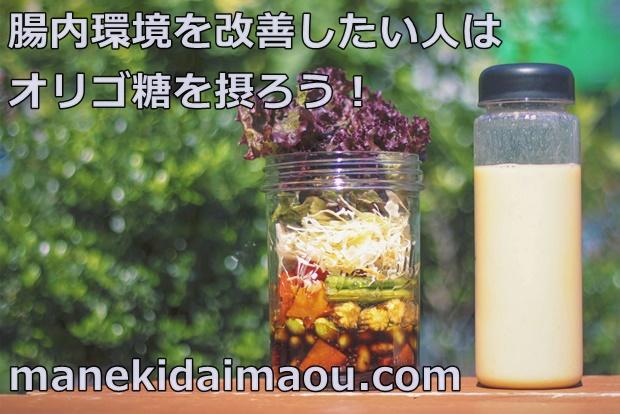f:id:menekidaimaou:20170312102913j:plain