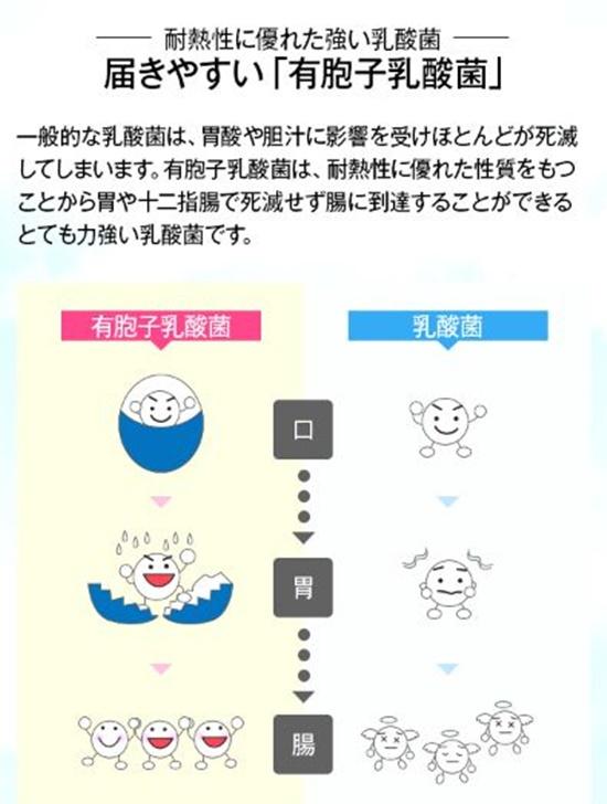f:id:menekidaimaou:20170401162044j:plain