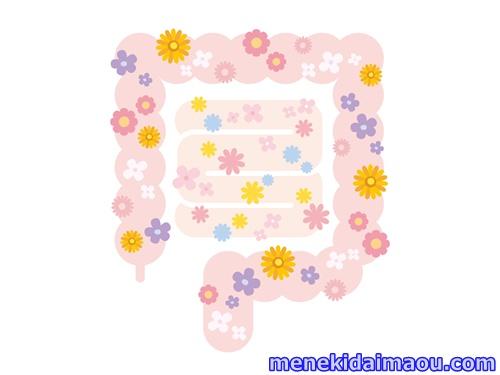 f:id:menekidaimaou:20170402122128j:plain