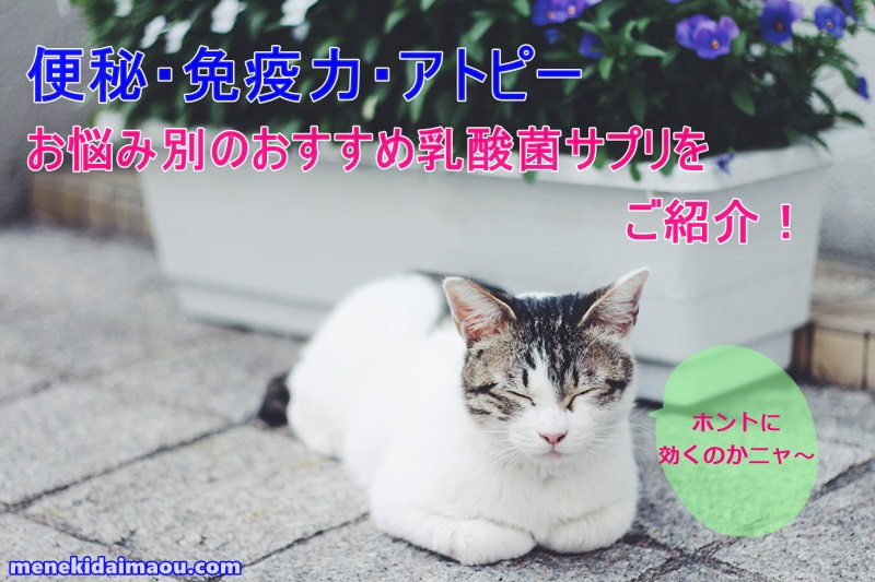 f:id:menekidaimaou:20170408170937j:plain