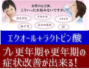 f:id:menekidaimaou:20170504193617j:plain