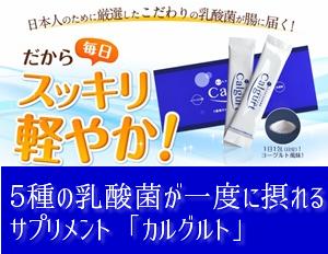 f:id:menekidaimaou:20170504200154p:plain