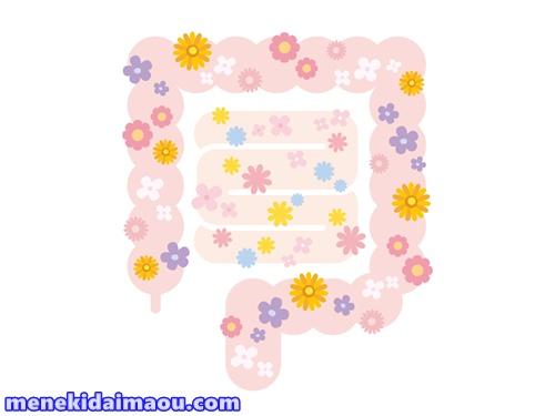 f:id:menekidaimaou:20170603121655j:plain
