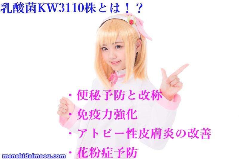 f:id:menekidaimaou:20170603150817j:plain