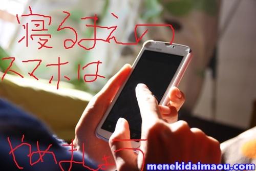 f:id:menekidaimaou:20170706230708j:plain