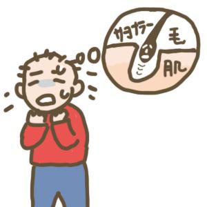 f:id:menekiryoku:20171227000246j:plain