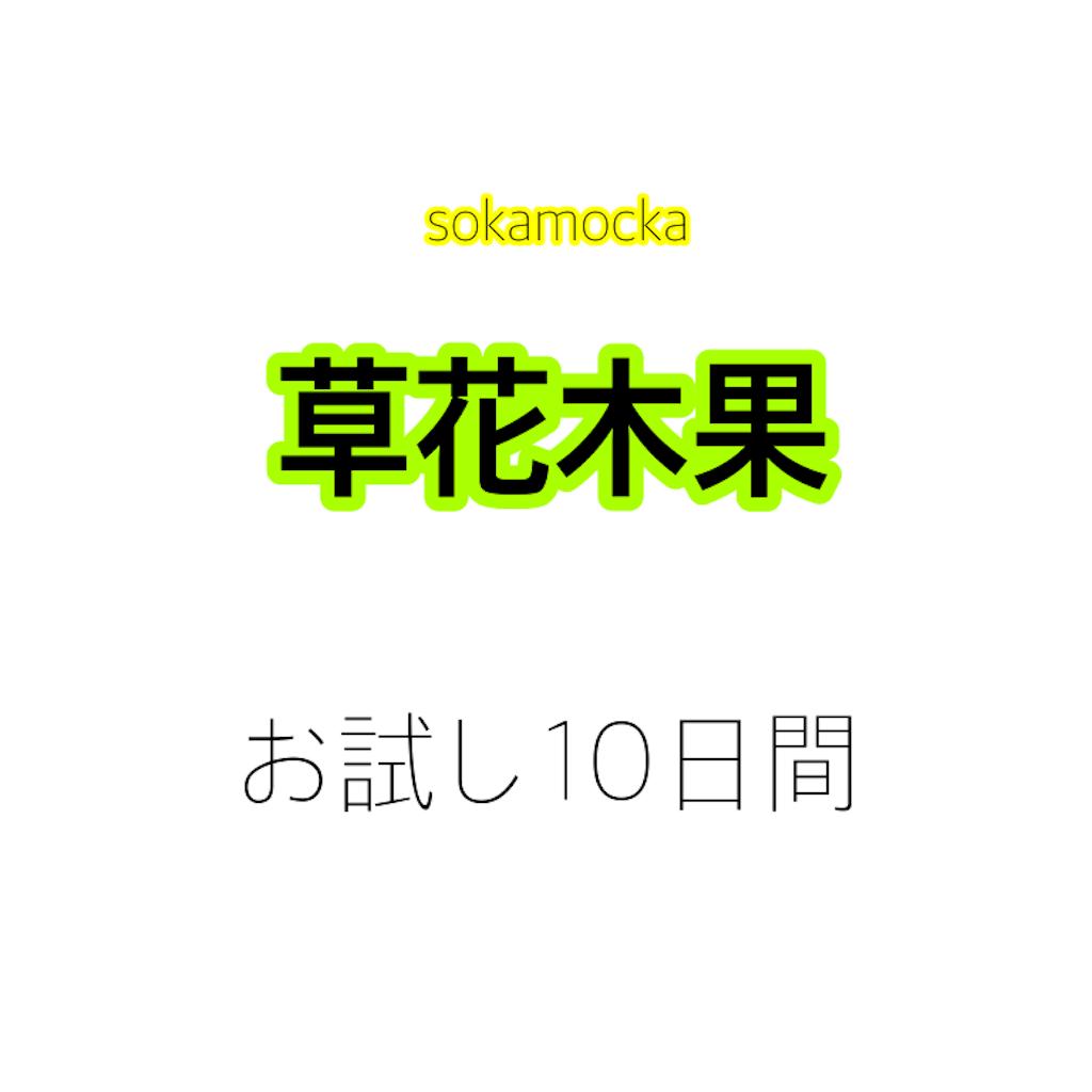 f:id:menhelako:20190720180033p:image