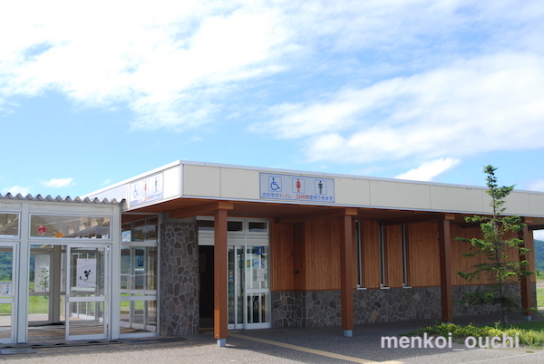 f:id:menkoi-ouchi-mikan:20200106221050j:plain