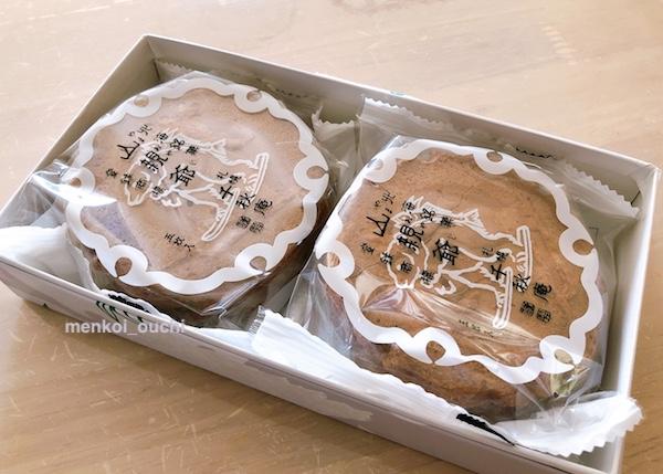 f:id:menkoi-ouchi-mikan:20200118092528j:plain