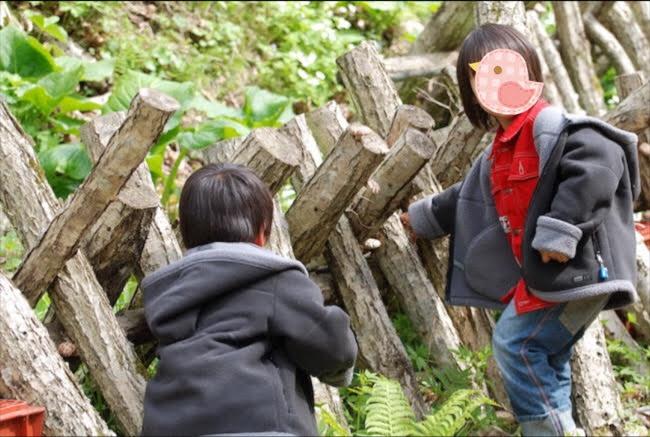 f:id:menkoi-ouchi-mikan:20200813141543j:plain