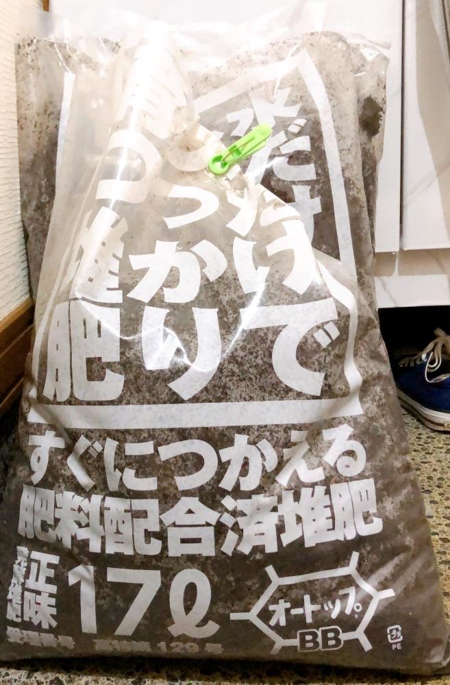 f:id:menkoi-ouchi-mikan:20210614141017j:plain