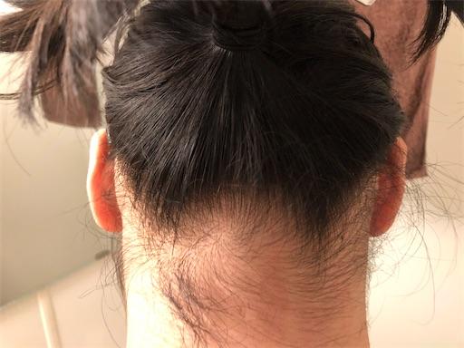 f:id:menobear:20200603223030j:image:w300