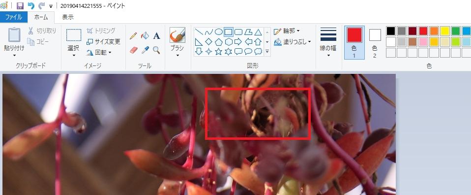 f:id:mentsuyu-san:20190505141241j:plain