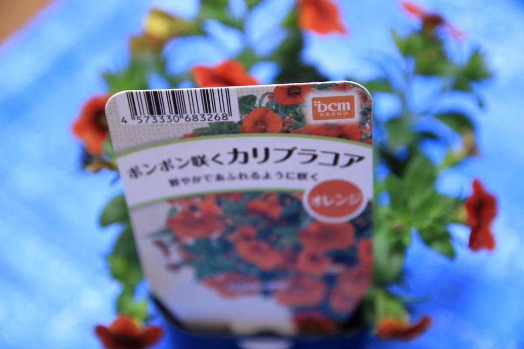 f:id:mentsuyu-san:20190506130409j:plain