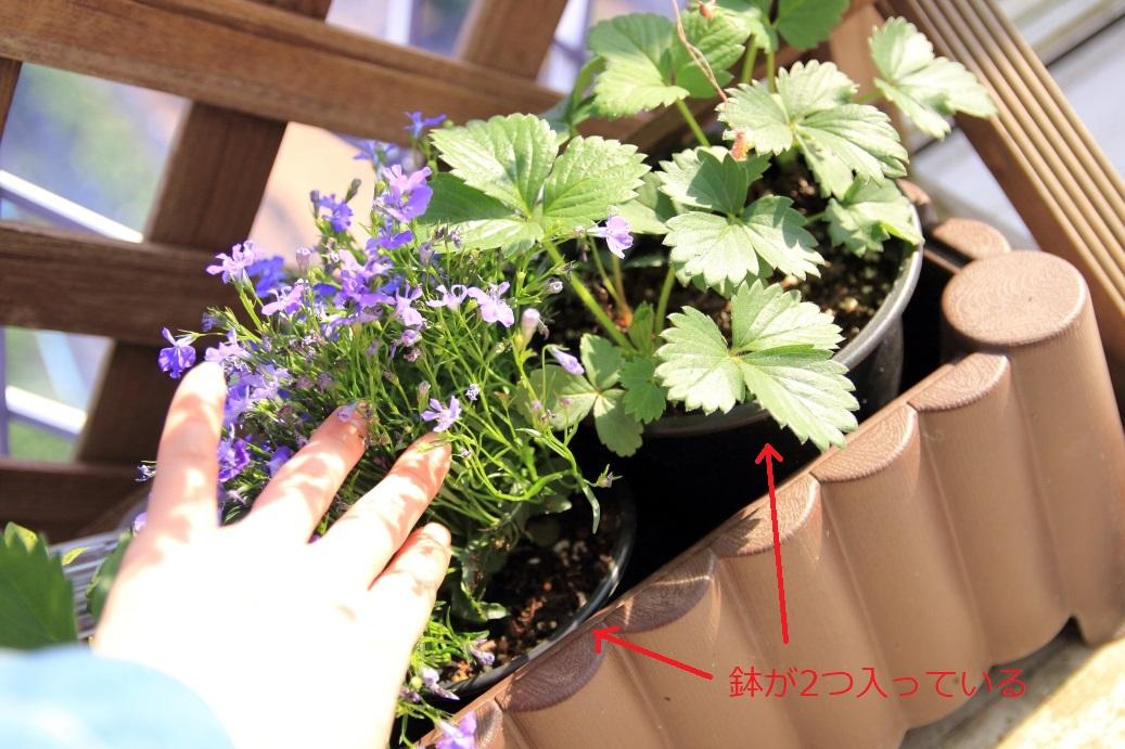 f:id:mentsuyu-san:20190506132141j:plain