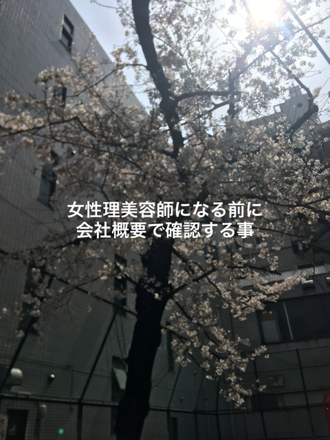 f:id:menzusettoribiyousi:20190414012943p:plain