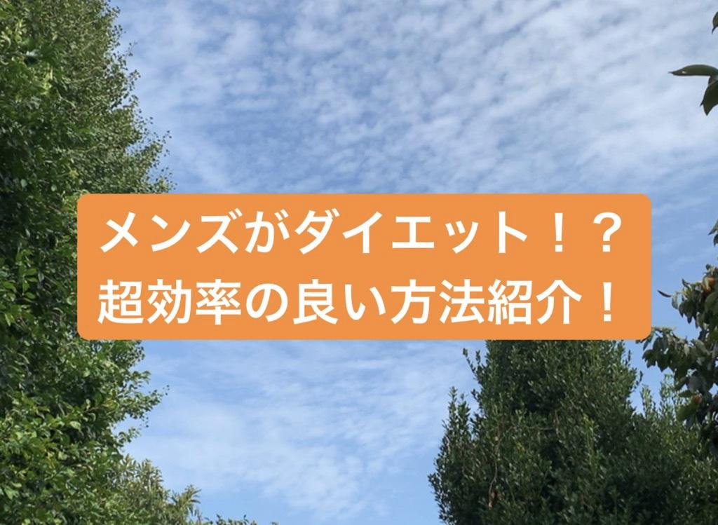 f:id:menzusettoribiyousi:20191004011454j:plain