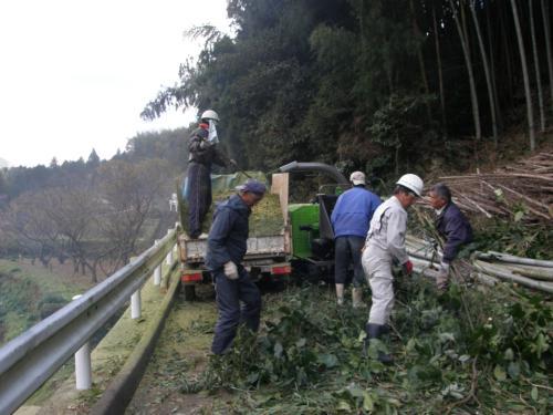 竹林整備の様子