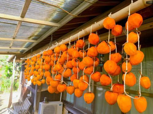 吊るした柿