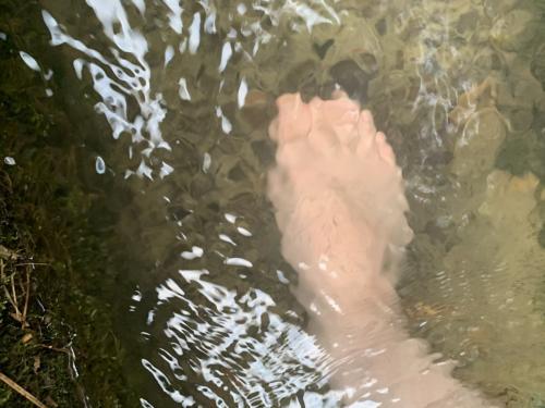 水に浸かってみるの巻