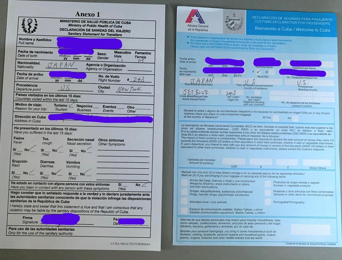 機内で配られたキューバの入国書類