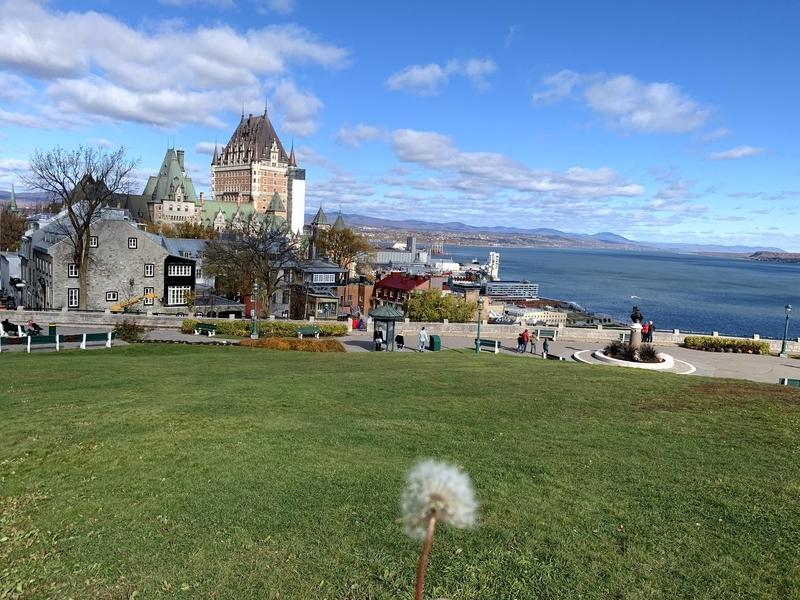 ケベック:トッケビロケ地のお墓がある丘でたんぽぽの綿毛を吹く