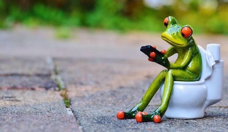 トイレに座るカエル