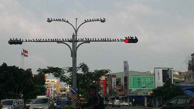 taiwan-653244_640