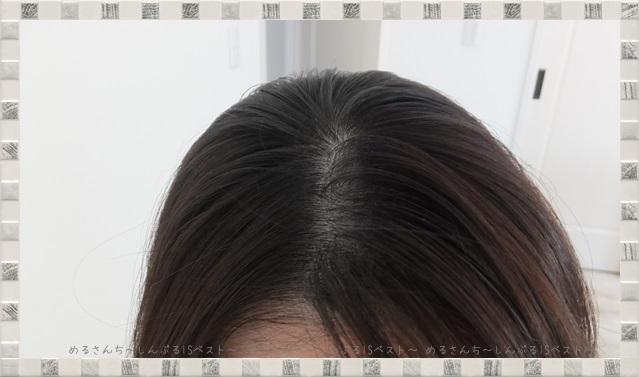 f:id:merusan:20190519022405j:plain