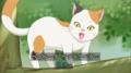 ペラペラ喋る猫
