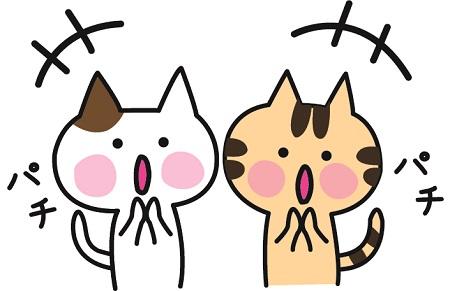 拍手するネコ